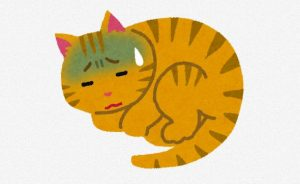 sick_cat